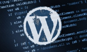 Key Features Of A Brilliant WordPress Hosting Setup