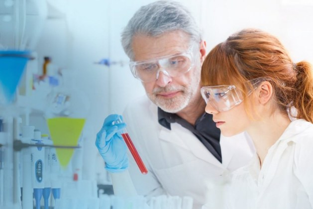 Explain the Importance of Pharmacokinetic (PK) Studies in Drug Discovery and Development