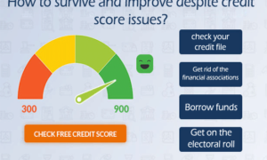 How to survive and improve despite credit score issues?