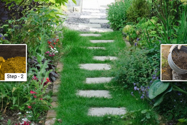 How To Install Stepping Stones In Your Backyard