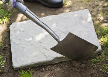Loosen the soil with a garden fork