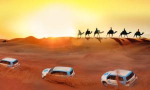 Dubai Desert Safari Thrill You Want