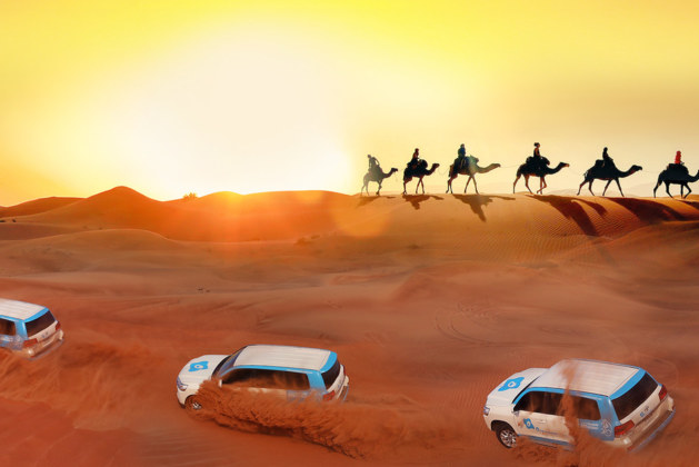 Dubai Desert Safari Thrill You Want