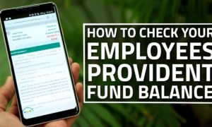 Check Provident Fund (PF) Balance In Just Five Minutes