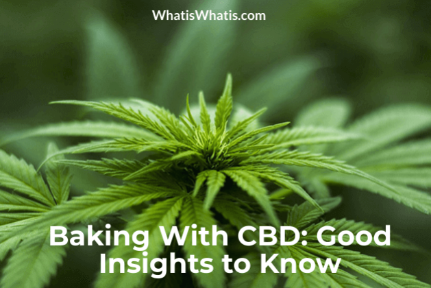 Baking With CBD: Good Insights to Know