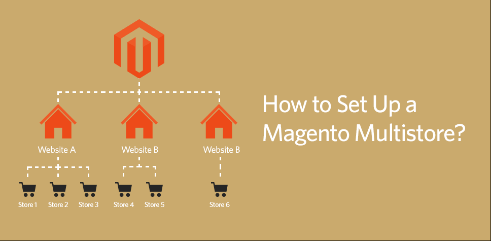 How to set up a Magneto Multi-Store Management