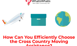 How Can You Efficiently Choose the Cross Country Moving Assistance?