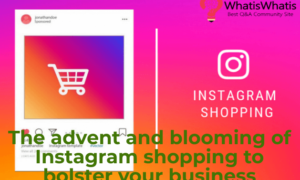 The advent and blooming of Instagram shopping to bolster your business