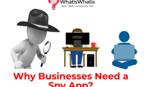 Why Businesses Need a Spy App?