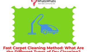 Fast Carpet Cleaning Method: What Are the Different Types of Dry Cleaning?