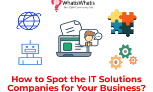 How to Spot the IT Solutions Companies for Your Business?