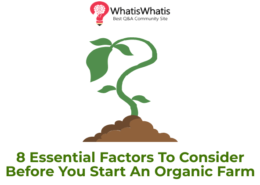 8 Essential Factors To Consider Before You Start An Organic Farm