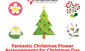 Fantastic Christmas Flower Arrangements for Christmas Day