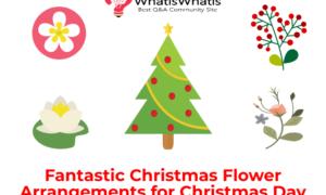 Fantastic Christmas Flower Arrangements for Christmas Day