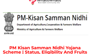 PM Kisan Samman Nidhi Yojana Scheme (PMKSNY)| Status, Eligibility And Fruits