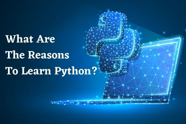 What Are The Reasons To Learn Python?