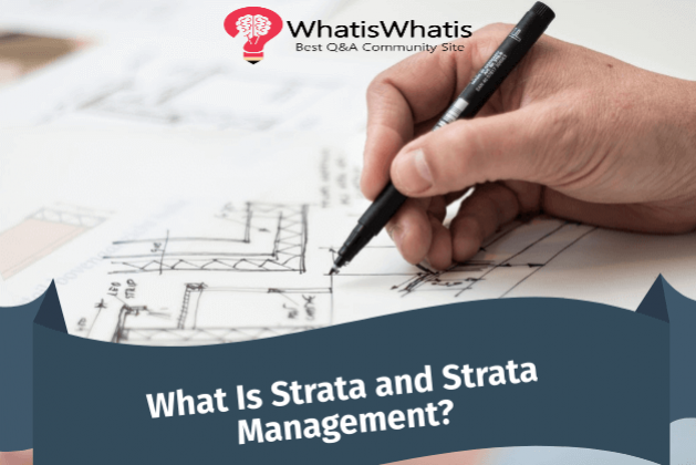 What Is Strata and Strata Management?