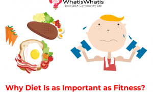 Why Diet Is as Important as Fitness?