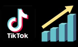 Social Media Marketing: How To Use TikTok For Business Marketing