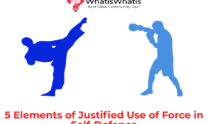 5 Elements of Justified Use of Force in Self-Defence