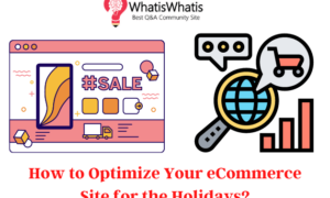 How To Optimize Your eCommerce Site for the Holidays?