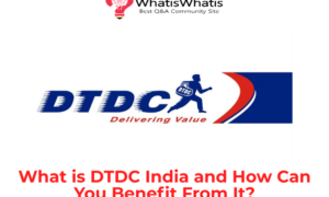 What is DTDC India and How Can You Benefit From It?