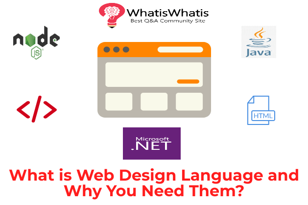 What is Web Design Language and Why You Need Them?