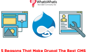 5 Reasons That Make Drupal The Best CMS