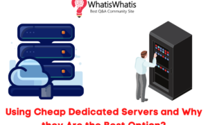 Using Cheap Dedicated Servers and Why they Are the Best Option?