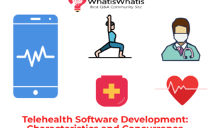 Telehealth Software Development: Characteristics and Concurrence