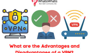 What are the Advantages and Disadvantages of a VPN?