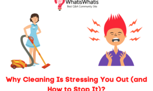 Why Cleaning Is Stressing You Out (and How to Stop It)?