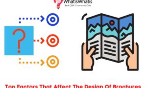 Top Factors That Affect The Design Of Brochures