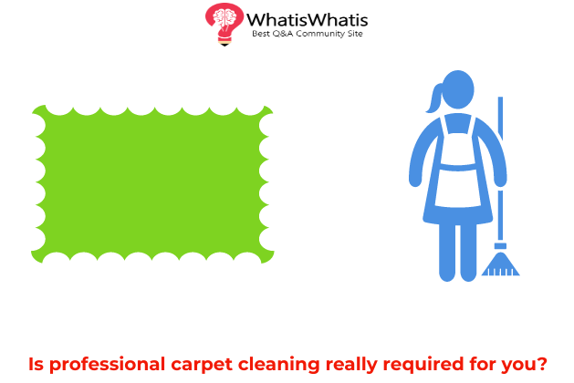 Professional Carpet Cleaning, The Importance of Hygiene in Offices