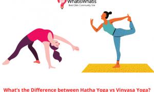 What's the Difference between Hatha Yoga vs Vinyasa Yoga?