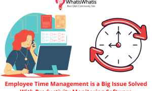Employee Time Management is a Big Issue Solved With Productivity Monitoring Software
